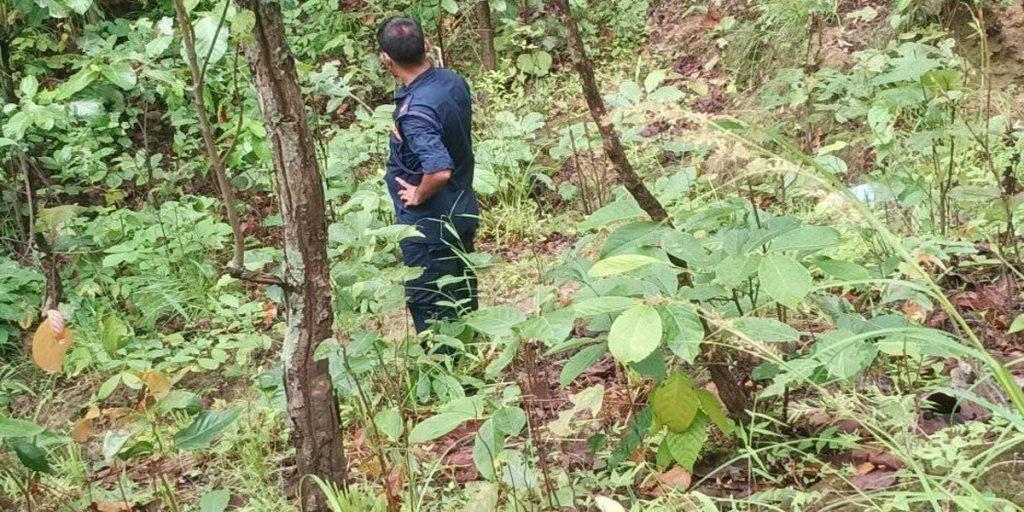 डडेल्धुरामा एक स्वास्थ्यकर्मी जंगलमा मृत फेला